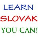 906287_slovencina-pre-cudzincov